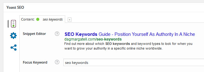snippet from Yoast SEO tool, displaying the focus keyword field